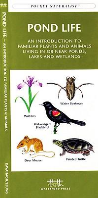 Pond Life By Kavanagh, James